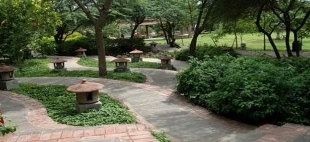 Garden Landscape Design Delhi : Garden of five senses new delhi
