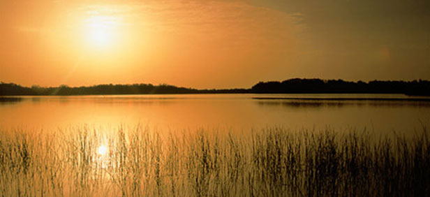 Best Time To Visit Everglades National Park Usa