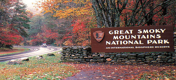 Sightseeing In Great Smoky Mountains National Park Best