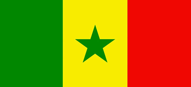 Burkina faso flag pictures