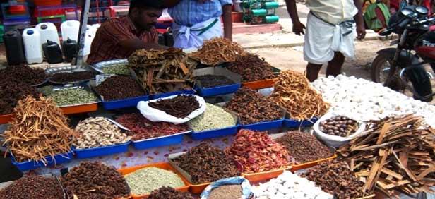 Spice Market in Alappuizha, Kerala