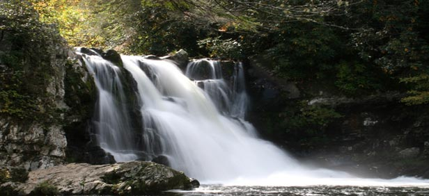 Sightseeing In Great Smoky Mountains National Park Best Places To Visit In Great Smoky