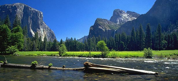 Sightseeing In Yosemite National Park Best Places To