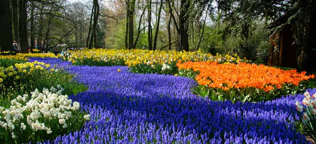 Sightseeing in netherlands netherlands sightseeing tour places sciox Image collections