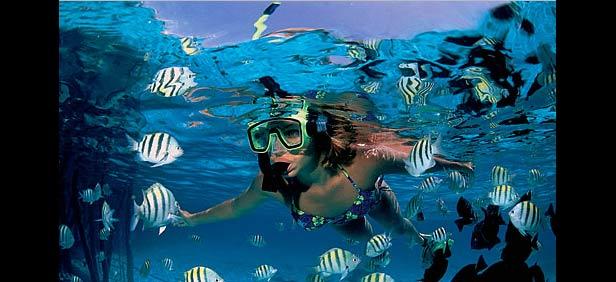 Snorkelling, Adventure Activity